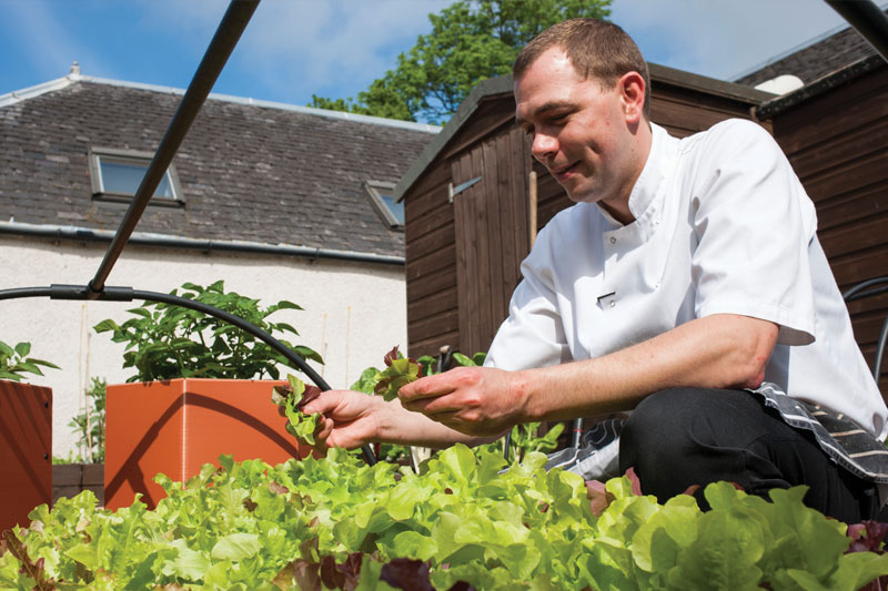 Tim in The Roost's kitchen garden